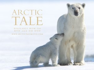arctic-tale